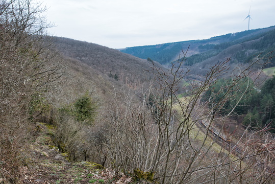 On a narrow trail above the Wiltz valley