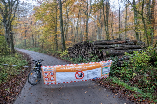 Road closure forestry works banner
