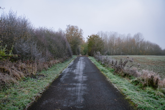 Frosty cycleway