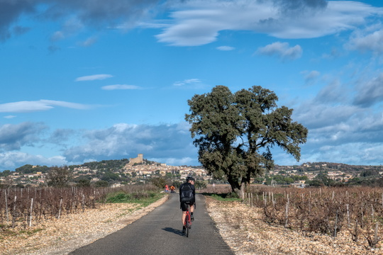 Cycling to Châteauneuf-du-Pape