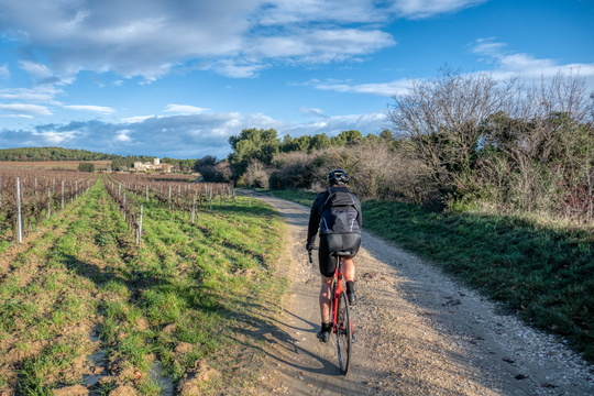 Cycling to Sorgues