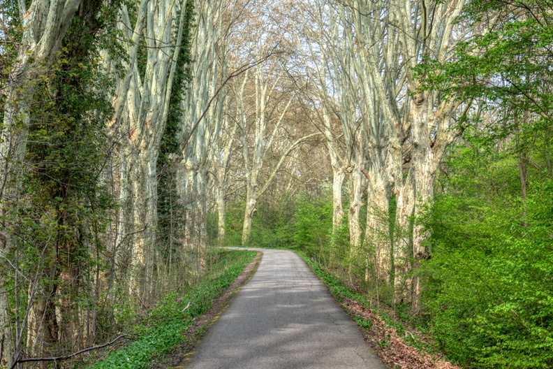 Spring on Piste des Forts (EuroVelo 15)