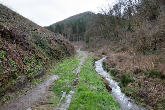 Track between Bourscheid and Michelau