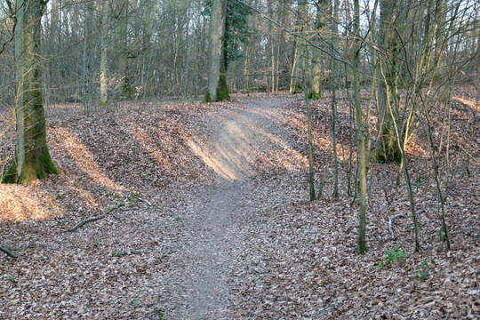 Exploring some unvisited tracks near Leudelange