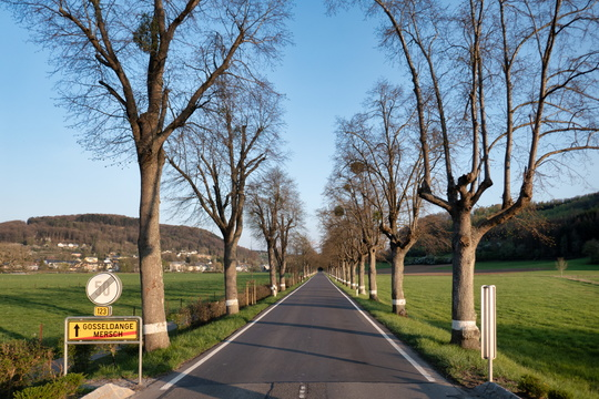 Road between Mersch and Gosseldange
