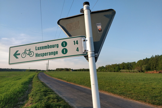 Cycling directions near Syren