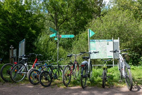 Cycling near Lauterbach, Saarland
