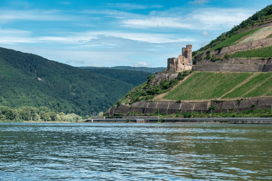 The Rhine river in Bingen am Rhein
