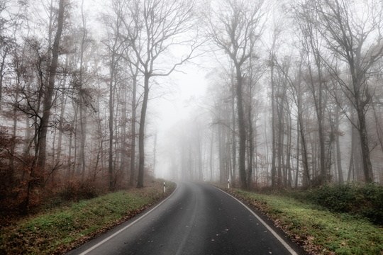 Closed road in the morning fog