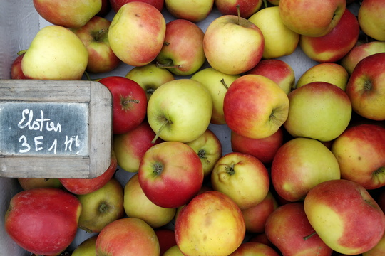 The best apples at the market