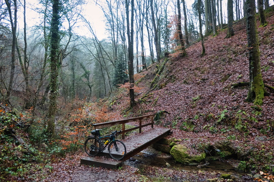 Cycling in Mullerthal