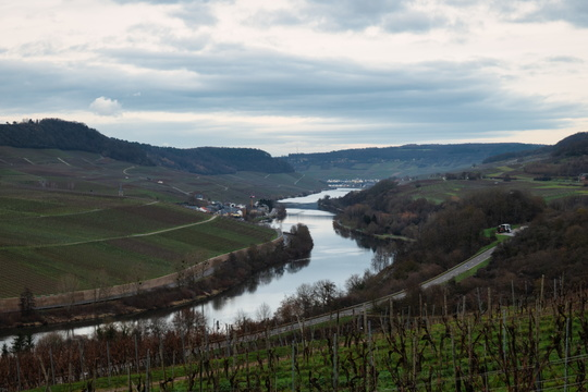 Moselle valley from Wincheringen